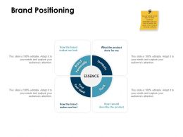 Brand Positioning Essence Ppt Powerpoint Presentation Summary