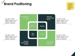 Brand Positioning Facts Product Ppt Powerpoint Presentation File Layouts