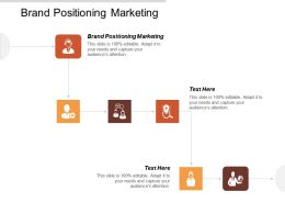 Brand Positioning Marketing Ppt Powerpoint Presentation Icon Template Cpb