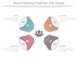 Brand Positioning Powerpoint Slide Themes