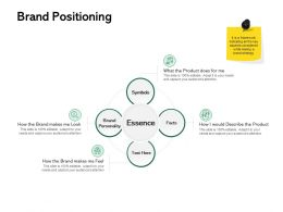 Brand Positioning Ppt Powerpoint Presentation Visual Aids Example File
