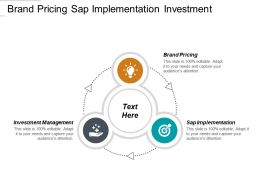 Brand Pricing Sap Implementation Investment Management Lean Agile Marketing Mix Cpb