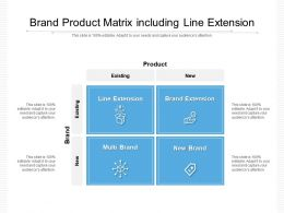 Brand Product Matrix Including Line Extension