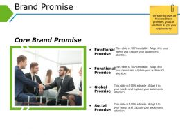 Brand Promise Powerpoint Slide Rules