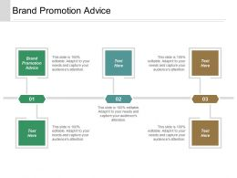 Brand Promotion Advice Ppt Powerpoint Presentation Infographics Structure Cpb