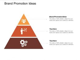 Brand Promotion Ideas Ppt Powerpoint Presentation File Introduction Cpb