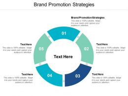 Brand Promotion Strategies Ppt Powerpoint Presentation File Guide Cpb