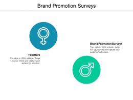 Brand Promotion Surveys Ppt Powerpoint Presentation Professional Templates Cpb