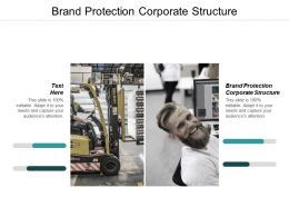 Brand Protection Corporate Structure Ppt Powerpoint Presentation Gallery Layouts Cpb
