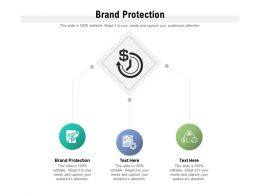 Brand Protection Ppt Powerpoint Presentation Icon Format