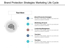 Brand Protection Strategies Marketing Life Cycle Leadership Management Cpb