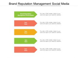 Brand Reputation Management Social Media Ppt Infographics Example Topics Cpb