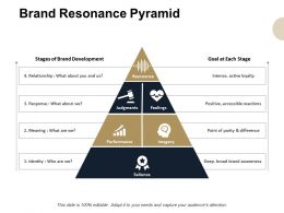 Brand Resonance Pyramid Brand Development Powerpoint Presentation Professional Skills