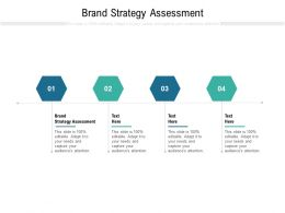 Brand Strategy Assessment Ppt Powerpoint Presentation Icon Templates Cpb