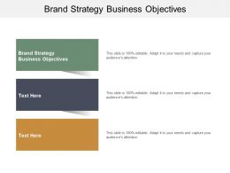 Brand Strategy Business Objectives Ppt Powerpoint Presentation Ideas Grid Cpb