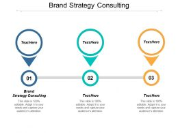 Brand Strategy Consulting Ppt Powerpoint Presentation File Ideas Cpb