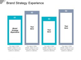 Brand Strategy Experience Ppt Powerpoint Presentation Gallery File Formats Cpb