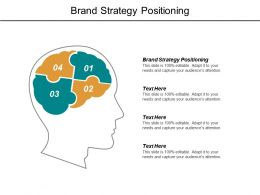 Brand Strategy Positioning Ppt Powerpoint Presentation File Example File Cpb