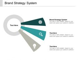 Brand Strategy System Ppt Powerpoint Presentation Visual Aids Outline Cpb