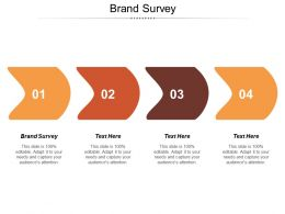 Brand Survey Ppt Powerpoint Presentation File Mockup Cpb