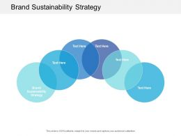 Brand Sustainability Strategy Ppt Powerpoint Presentation Pictures Summary Cpb