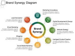 Brand Synergy Diagram Ppt Presentation Examples