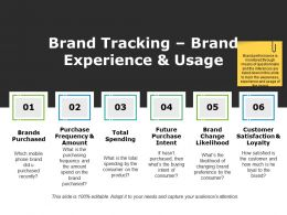 Brand Tracking Brand Experience And Usage Powerpoint Slide