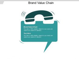 Brand Value Chain Ppt Powerpoint Presentation Visual Aids Layouts Cpb