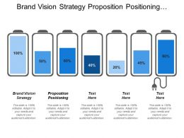 Brand Vision Strategy Proposition Positioning Integrated Activity Plan