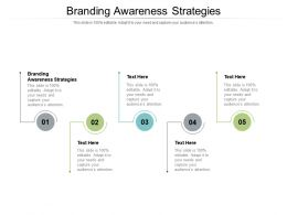 Branding Awareness Strategies Ppt Powerpoint Presentation File Structure Cpb
