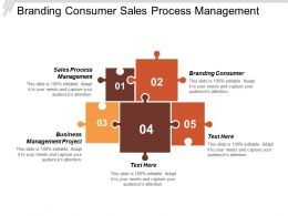 Branding Consumer Sales Process Management Business Management Project Cpb