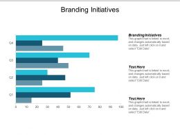 Branding Initiatives Ppt Powerpoint Presentation Infographics Example File Cpb
