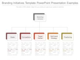 Branding Initiatives Template Powerpoint Presentation Examples