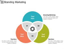 Branding Marketing Ppt Powerpoint Presentation Icon Graphics Cpb