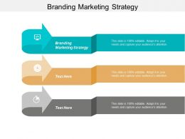 Branding Marketing Strategy Ppt Powerpoint Presentation File Layout Cpb
