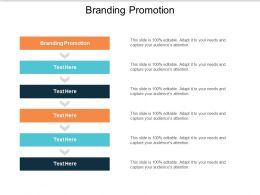 Branding Promotion Ppt Powerpoint Presentation Summary Good Cpb