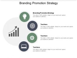 Branding Promotion Strategy Ppt Powerpoint Presentation Infographics Introduction Cpb