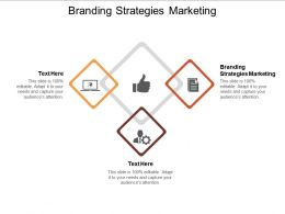 Branding Strategies Marketing Ppt Powerpoint Presentation Layouts Backgrounds Cpb