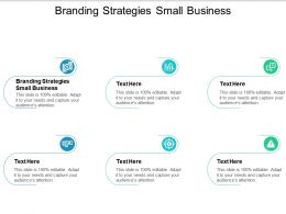 Branding Strategies Small Business Ppt Powerpoint Presentation Infographic Template Cpb