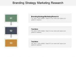 Branding Strategy Marketing Research Ppt Powerpoint Presentation Pictures Model Cpb