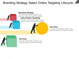 Branding Strategy Select Online Targeting Lifecycle Brand Development