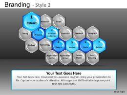 Branding Style 2 Powerpoint Presentation Slides DB