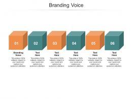 Branding Voice Ppt Powerpoint Presentation Show Cpb