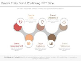 Brands Traits Brand Positioning Ppt Slide