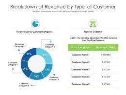 Breakdown Of Revenue By Type Of Customer
