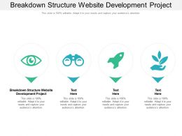 Breakdown Structure Website Development Project Ppt Powerpoint Presentation Summary Gallery
