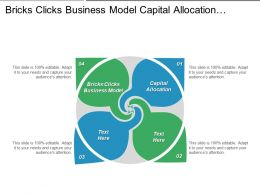 Bricks Clicks Business Model Capital Allocation Aerial Advertising Cpb