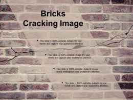 Bricks Cracking Image