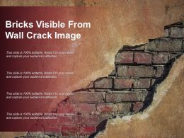 Bricks Visible From Wall Crack Image