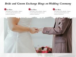 Bride And Groom Exchange Rings On Wedding Ceremony